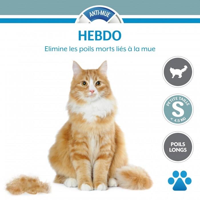 Shampooing et toilettage - Brosse Furminator poils courts pour chats
