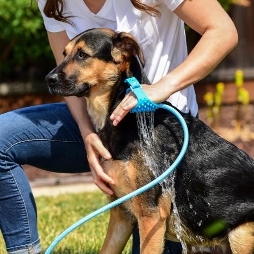 Shampooing et toilettage - Pommeau de douche massant pour chiens