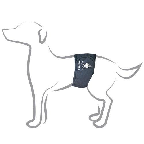 Hygiène incontinence du chien - Bande d'incontinence Camon