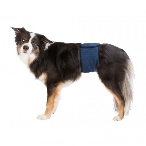 Soin et hygiène du chien - Bande ventrale pour mâles pour chiens