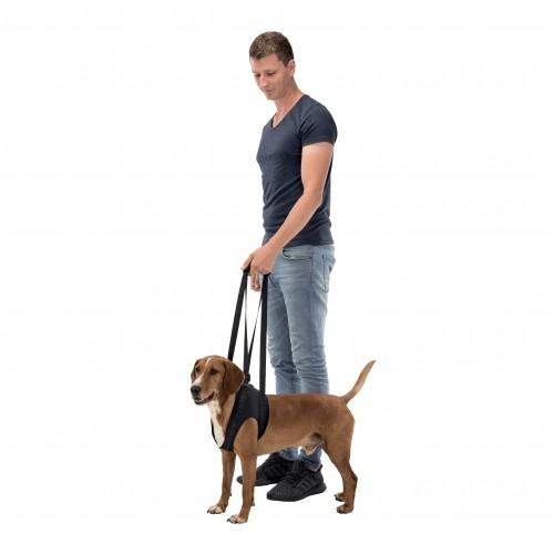 Soin et hygiène du chien - Harnais d'aide à la marche pour chiens