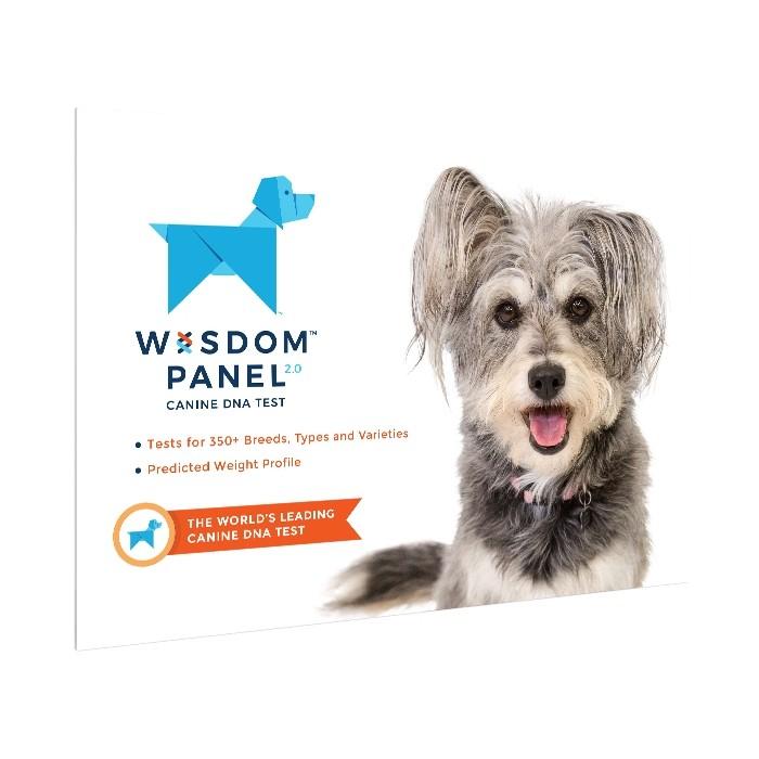 wisdom panel 2 0 test adn pour chien wanimo. Black Bedroom Furniture Sets. Home Design Ideas