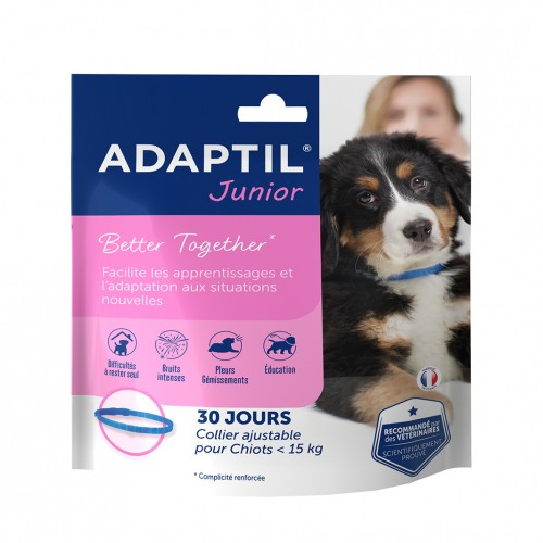 Stress, comportement chien - ADAPTIL® Junior collier pour chiens