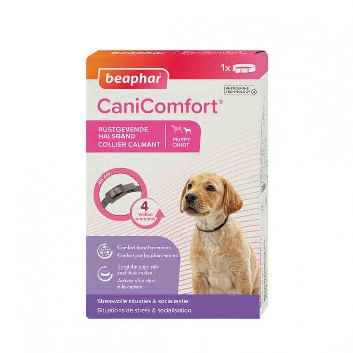 Stress, comportement chien - Collier CaniComfort® pour chiens
