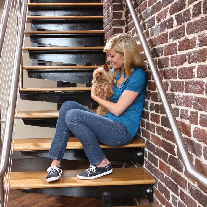Stress, comportement chien - Boitier anti-aboiements Bark Control pour chiens
