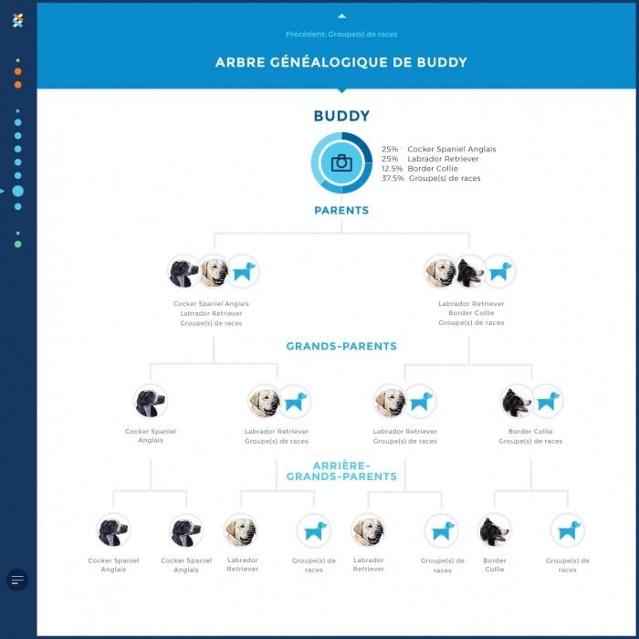 Accessoires chien - Test ADN Wisdom Panel 2.0 pour chiens