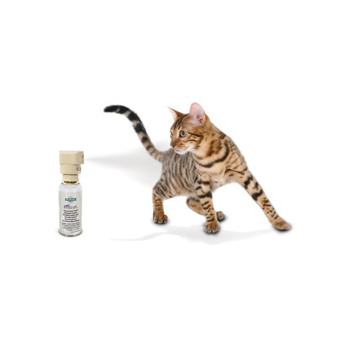 Stress, comportement chat - Spray Ssscat pour chats