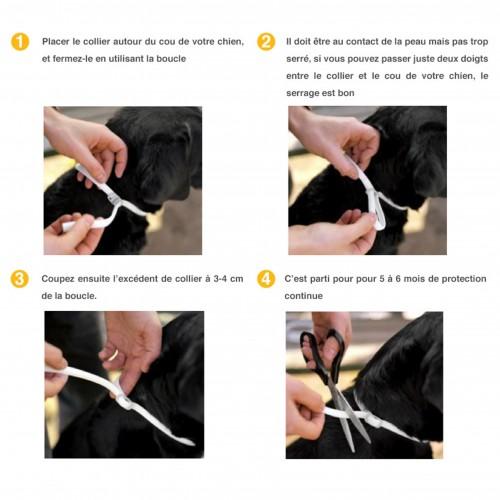 Tiques, puces & vers - Collier Scalibor pour chiens