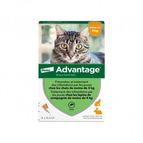 Pipettes advantage anti puces pour chat et lapin bayer wanimo - Anti puce chat huile essentielle ...
