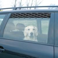 Accessoires auto pour chien - Grille d'aération pour fenêtre auto Trixie