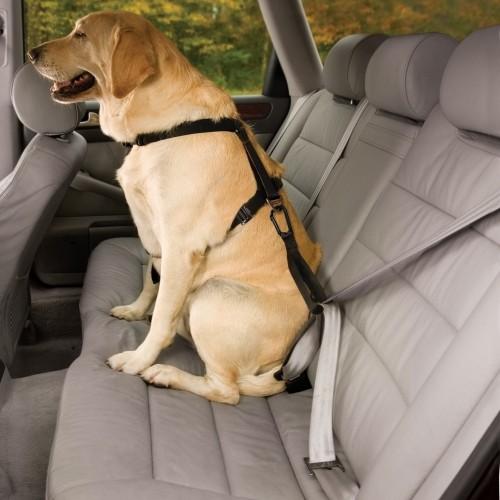 Transport du chien - Harnais de sécurité auto Tru-Fit Smart - Noir pour chiens