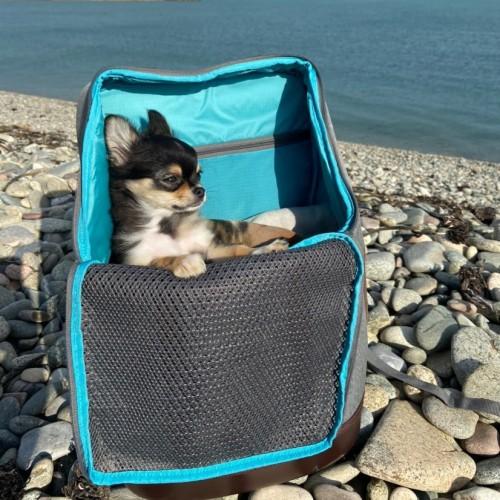 Transport du chien - Sac à dos K9 Rucksack pour chiens