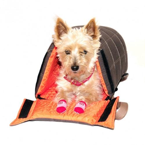 Transport du chien - Sac ventral ou dos Lenis pour chiens