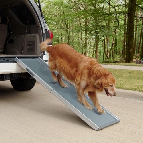Accessoires chien - Rampe téléscopique Deluxe 2 parties pour chiens