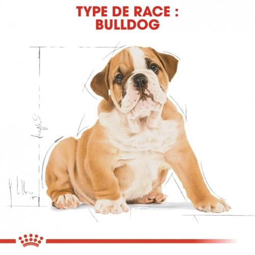 Ventes Privées - Royal Canin Bulldog Anglais Puppy - Croquettes pour chiot pour chiens