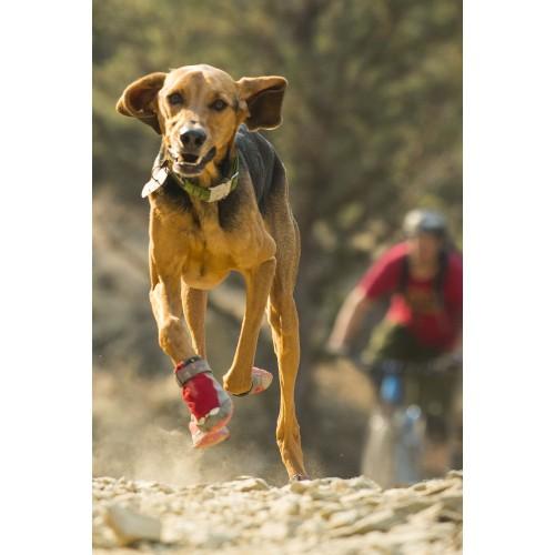 Ventes Privées - Lot de 4 Bottillons Grip Trex pour chiens