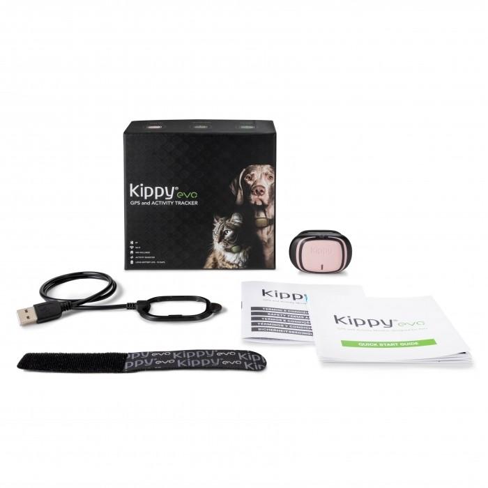 Ventes Privées - GPS et moniteur d'activité EVO pour chats