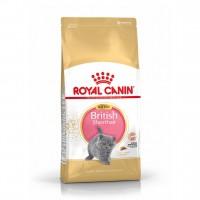 Croquettes pour chat - Royal Canin British Shorthair Kitten British Shorthair Kitten