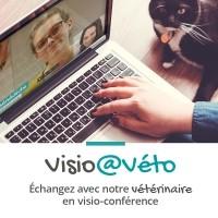 Conseils vétérinaires - Visio@véto Entretien vidéo de 15 minutes