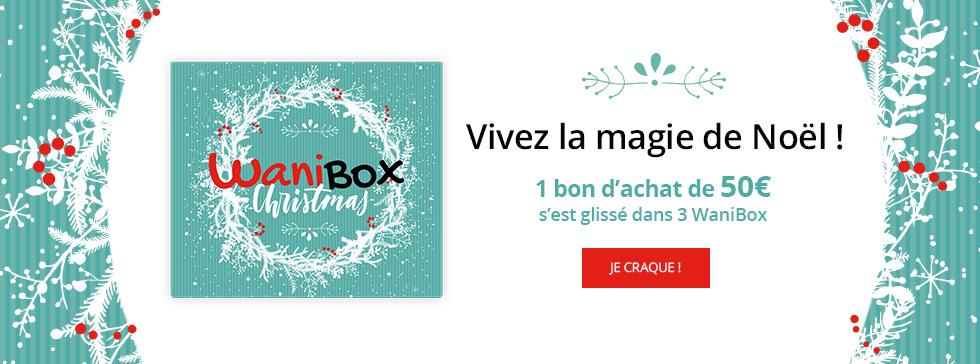 Retrouvez la wanibox Christmas