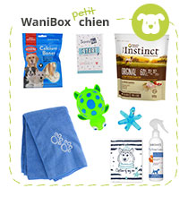 WaniBox petit chien