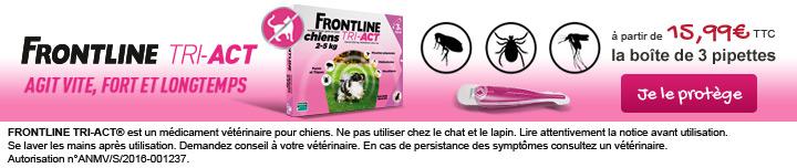 Frontline Tri-Act : une protection rapide et efficace pour votre chien contre les puces, les tiques et les moustiques