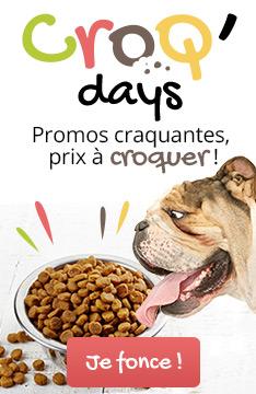 Croq Days : Promos sur les aliments pour chien