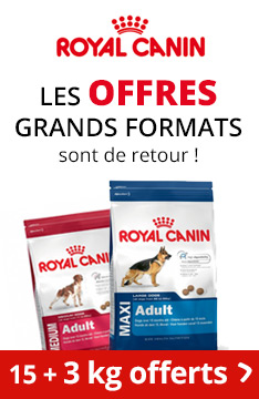 Croquettes Royal Canin en promo !