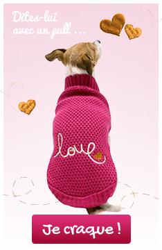 Pull Love pour lui montrer à quel point vous l'aimez !
