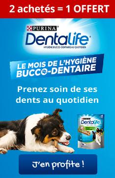 Dentalife : 2 achetés+ 1 offert