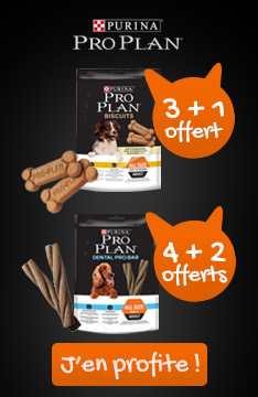 Snacks Proplan offerts