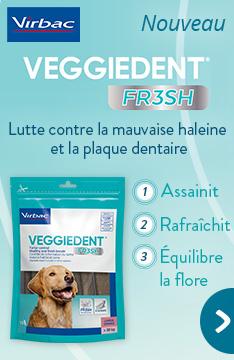 Veggiedent Fresh de Virbac