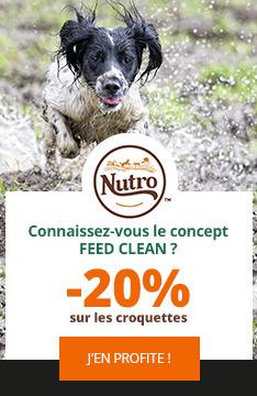 Nutro : croquettes pour chien