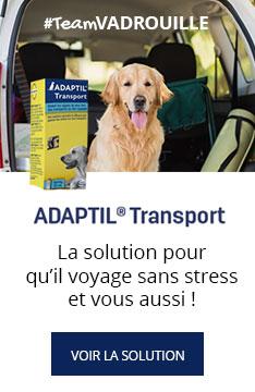 ADAPTIL Transport : La solution pour des trajets sans stress !