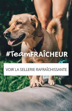 #teamFRAÎCHEUR