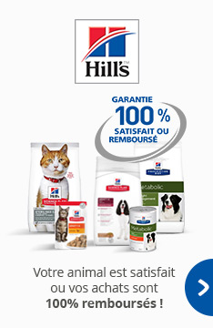 Alimentation Hill's