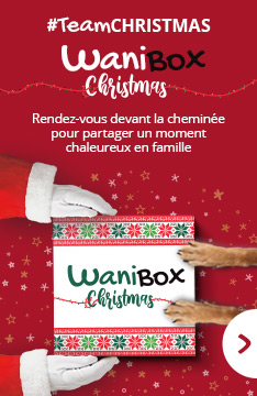 wanibox christmas