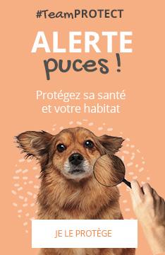 #TeamPROTECT : Protégez sa santé et votre habitat !