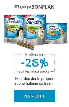 -25% sur les bâtonnets à mâcher Dentalife pour une bonne hygiène bucco-dentaire !