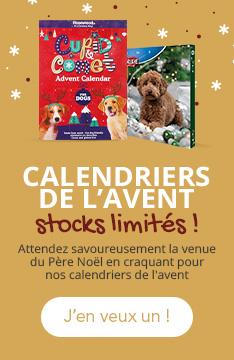 N'attendez plus pour offrir un calendrier de l'avent à votre chien, les stocks sont limités !