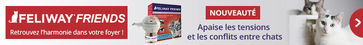 Nouveaut Feliway Friends : problème de cohabitation entre chat