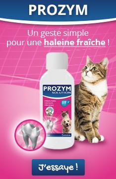 Découvrez la solution buvable Prozym : un geste simple pour une haleine fraîche !