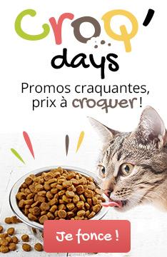 Croq days : promos sur les aliments pour chat