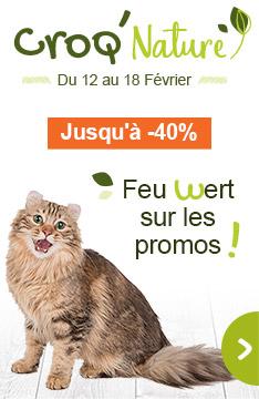 Promos sur les aliments naturels chat !