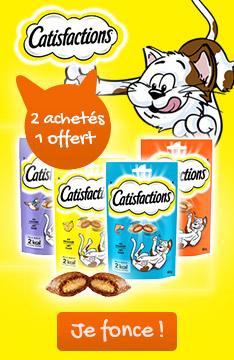 Friandises Catisfactions : 2 achetées + 1 offerte