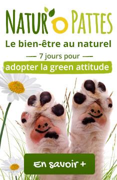 Retrouvez notre sélection de produits Bien-être au naturel pour chiens