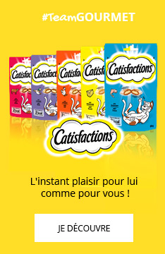 Friandises Catisfactions
