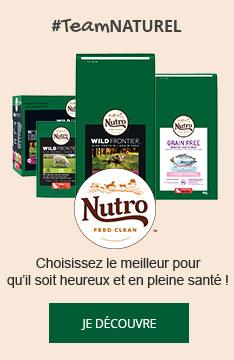 Croquettes Nutro