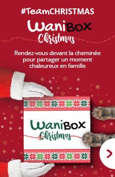wanibox christmas