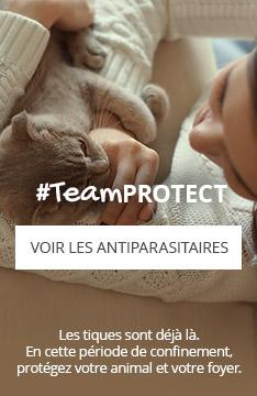 #TeamPROTECT : Protégez votre animal et votre foyer des tiques